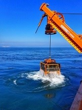 Utility ROV