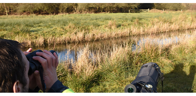 Bird surveying near Aldhurst Farm
