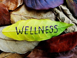 Mental wellbeing leaf